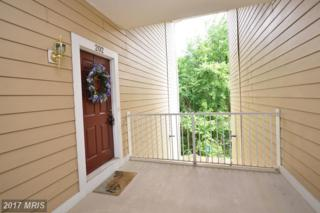 43300 Marymount Terrace #202, Ashburn, VA 20147 (#LO9959947) :: Wicker Homes Group