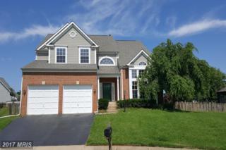 21413 Alum Creek Court, Ashburn, VA 20147 (#LO9960030) :: Wicker Homes Group