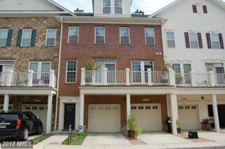 41984 Blue Flag Terrace, Aldie, VA 20105 (#LO9960197) :: Wicker Homes Group