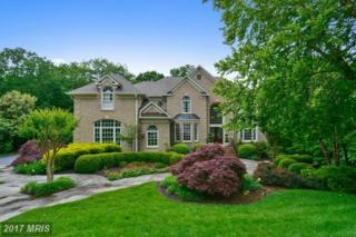 11258 Sommersworth Court, Sterling, VA 20165 (#LO9960202) :: Pearson Smith Realty