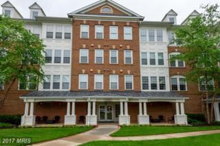 44485 Chamberlain Terrace #205, Ashburn, VA 20147 (#LO9960296) :: Wicker Homes Group