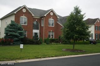 19924 Augusta Village Place, Ashburn, VA 20147 (#LO9960322) :: Arlington Realty, Inc.