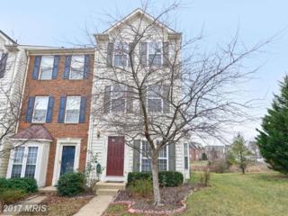 20937 Killawog Terrace, Ashburn, VA 20147 (#LO9960617) :: Wicker Homes Group