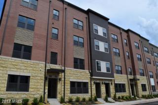 20566 Milbridge Terrace #95, Ashburn, VA 20147 (#LO9960683) :: Arlington Realty, Inc.