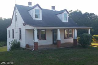 4009 Blue Ridge Turnpike, Rochelle, VA 22738 (#MA9941384) :: Pearson Smith Realty