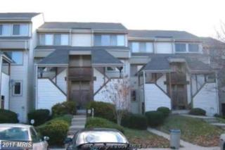 18218 Windsor Hill Drive #305, Olney, MD 20832 (#MC9742285) :: LoCoMusings