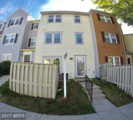 13105 Musicmaster Drive #85, Silver Spring, MD 20904 (#MC9793728) :: Pearson Smith Realty