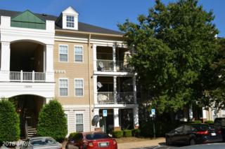 13203 Astoria Hill Court D, Germantown, MD 20874 (#MC9816098) :: Pearson Smith Realty