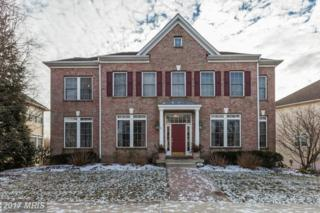 208 Rose Petal Way, Rockville, MD 20850 (#MC9839299) :: Pearson Smith Realty