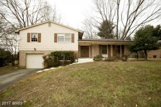 13726 Mills Avenue, Silver Spring, MD 20904 (#MC9842634) :: Pearson Smith Realty