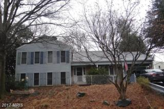 12016 Winesap Terrace, North Potomac, MD 20878 (#MC9845668) :: LoCoMusings