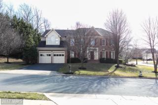 14001 Marian Drive, Rockville, MD 20850 (#MC9860686) :: Pearson Smith Realty