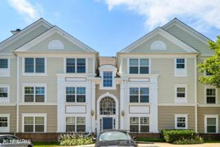 174 Kendrick Place #16, Gaithersburg, MD 20878 (#MC9861671) :: Pearson Smith Realty