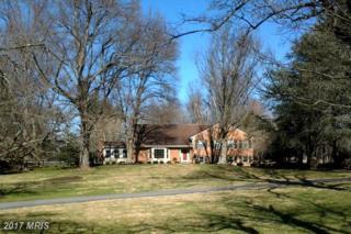 10120 Chapel Road, Potomac, MD 20854 (#MC9866099) :: Pearson Smith Realty