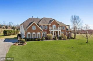 21311 Denit Estates Drive, Brookeville, MD 20833 (#MC9869662) :: Pearson Smith Realty