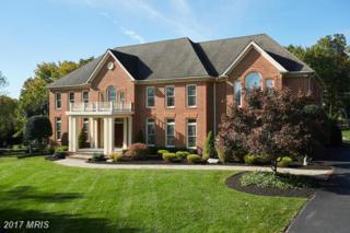 12636 Greenbriar Road, Potomac, MD 20854 (#MC9870250) :: Pearson Smith Realty