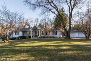 9029 Bronson Drive, Potomac, MD 20854 (#MC9870335) :: Pearson Smith Realty
