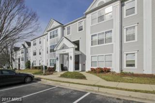 14202 Valleyfield Drive 11-38, Silver Spring, MD 20906 (#MC9871489) :: LoCoMusings