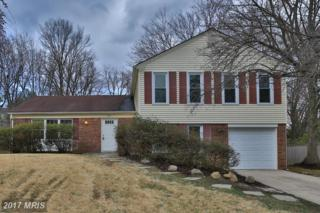 2205 Countryside Drive, Silver Spring, MD 20905 (#MC9881074) :: LoCoMusings