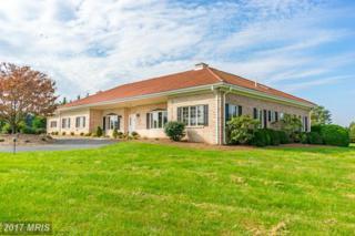 23930 Barley Field Lane, Dickerson, MD 20842 (#MC9884060) :: Pearson Smith Realty