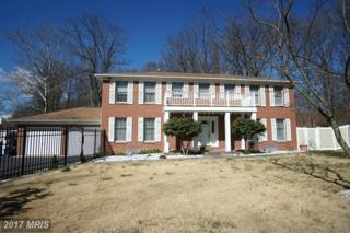 14000 Colesville Manor Place, Silver Spring, MD 20904 (#MC9887215) :: LoCoMusings