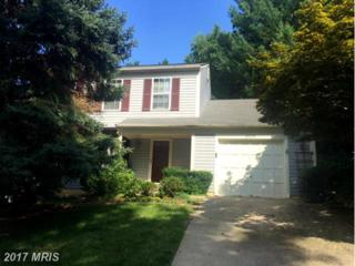 20819 Amber Hill Court, Germantown, MD 20874 (#MC9887574) :: LoCoMusings