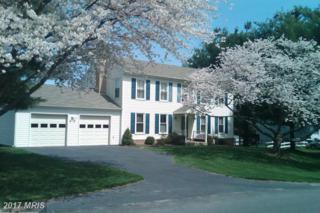 12209 Wonder View Way, North Potomac, MD 20878 (#MC9891273) :: LoCoMusings