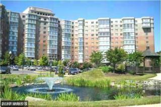 3100 Leisure World Boulevard #1015, Silver Spring, MD 20906 (#MC9892178) :: LoCoMusings