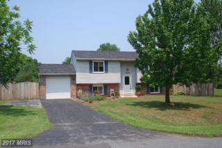 19125 Hempstone Avenue, Poolesville, MD 20837 (#MC9892460) :: LoCoMusings