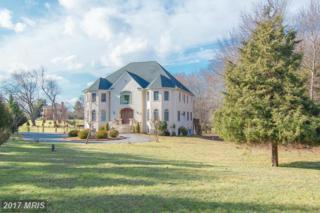 13101 Brushwood Way, Potomac, MD 20854 (#MC9894192) :: LoCoMusings