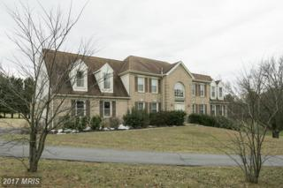 8620 Stableview Court, Gaithersburg, MD 20882 (#MC9894471) :: Pearson Smith Realty