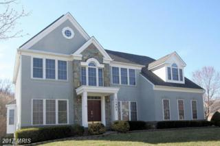 11401 Seneca Forest Circle, Germantown, MD 20876 (#MC9895572) :: Pearson Smith Realty