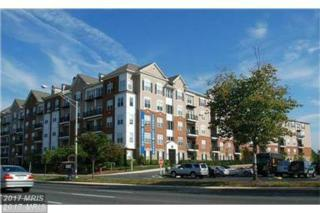501 Hungerford Drive #203, Rockville, MD 20850 (#MC9897021) :: Pearson Smith Realty