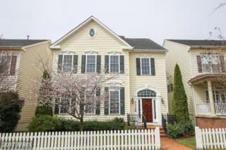 23108 Mistflower Drive, Clarksburg, MD 20871 (#MC9899961) :: Dart Homes