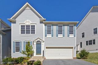 13219 Catawba Manor Way, Clarksburg, MD 20871 (#MC9901113) :: Pearson Smith Realty