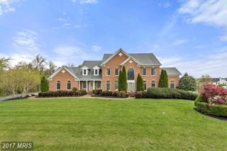 22009 Brown Farm Way, Brookeville, MD 20833 (#MC9912333) :: Pearson Smith Realty