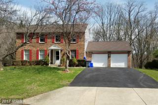 1228 Windmill Lane, Silver Spring, MD 20905 (#MC9913717) :: Pearson Smith Realty