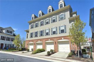 23256 Scholl Manor Way #1214, Clarksburg, MD 20871 (#MC9916446) :: Dart Homes