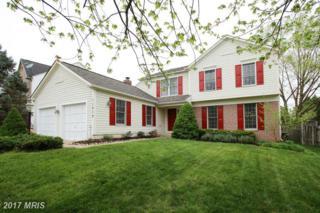 11215 Minstrel Tune Drive, Germantown, MD 20876 (#MC9919924) :: Dart Homes