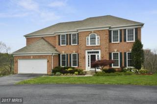 12805 W Old Baltimore Road, Boyds, MD 20841 (#MC9920416) :: Pearson Smith Realty