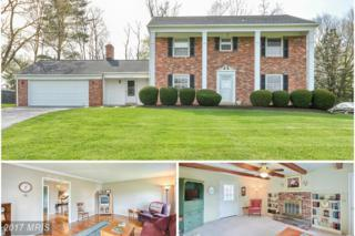 28429 Honeysuckle Drive, Damascus, MD 20872 (#MC9921214) :: Pearson Smith Realty