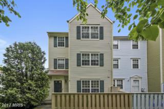 14612 Kinderhook Terrace, Burtonsville, MD 20866 (#MC9922768) :: Pearson Smith Realty
