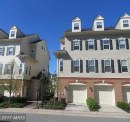 13404 Bluebeard Terrace #3284, Clarksburg, MD 20871 (#MC9922987) :: Pearson Smith Realty
