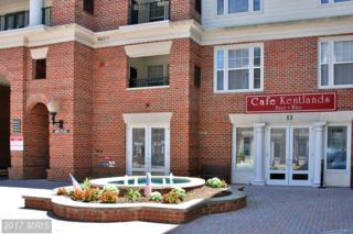 11 Arch Place, Gaithersburg, MD 20878 (#MC9924764) :: Pearson Smith Realty
