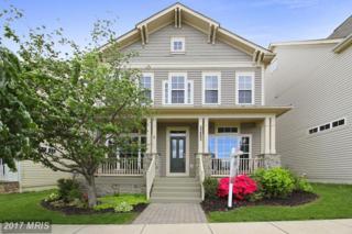 23802 Grapevine Ridge Terrace, Clarksburg, MD 20871 (#MC9925327) :: Pearson Smith Realty