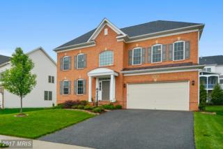 13781 Night Sky Drive, Silver Spring, MD 20906 (#MC9925755) :: Pearson Smith Realty
