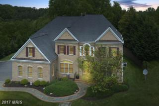 12249 Mcdonald Chapel Drive, North Potomac, MD 20878 (#MC9926454) :: Pearson Smith Realty