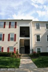 14911 Cleese Court D, Silver Spring, MD 20906 (#MC9929651) :: LoCoMusings