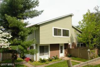 18610 Mustard Seed Court, Germantown, MD 20874 (#MC9930528) :: Dart Homes