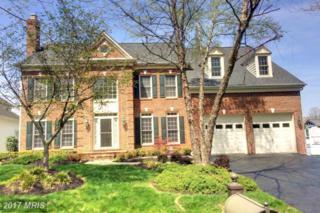 11320 Broad Green Drive, Potomac, MD 20854 (#MC9933217) :: Pearson Smith Realty